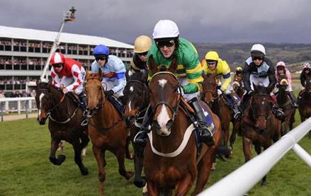 Buy Cheltenham Festival Horse Racing  Tickets
