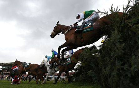 Buy Grand National Horse Racing  Tickets